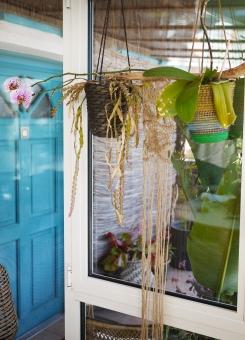 porte d'entrée et plantes