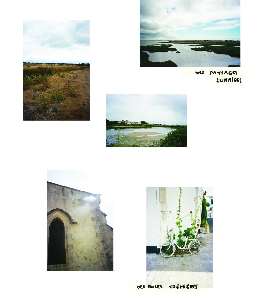 Patchwork d'images d'ambiances de l'île de Ré.