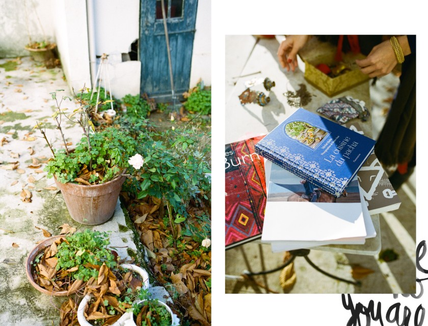 nourritures-rencontres-jeannebiehn-copyright-photo-nourritures-image7